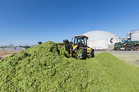 Loading forage clamp - Anaerobic Digestion