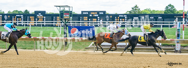 Willow Bob winning at Delaware Park on 9/7/16