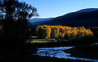Golden aspens line the banks of Lake Fork of the Gunnison River in late afternoon.