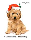 GIORDANO, CHRISTMAS ANIMALS, WEIHNACHTEN TIERE, NAVIDAD ANIMALES, paintings+++++,USGI2197,#XA# dogs,puppies