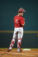 Palm Beach Cardinals catcher Steve Bean (11) during a game against the Bradenton Marauders on August 9, 2016 at McKechnie Field in Bradenton, Florida.  Bradenton defeated Palm Beach 8-7.  (Mike Janes/Four Seam Images)