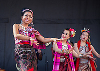 Thai Cultural Society, Chinese New Year 2018, Chinatown, Seattle, WA, USA.