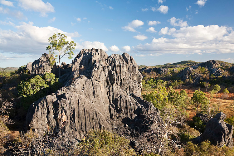 Karst scenery of the Chillagoe-Mungana Caves National Park.  Chillago, Queensland, Australia