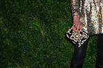 Actress Sunrise Coigney Ruffalo - hand bag detail-arrives at the MoMa Film Benefit Tribute to Julianna Moore presented by Chanel, at the Musuem of Modern Art in New York City, on November 13, 2017.