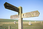 Wooden footpath signpost at the Avenue, Avebury World Heritage site, Wiltshire, England, UK