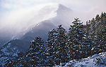 Mount Chapin, peak, snow,winter, landscape, forest, Rocky Mountain National Park, Colorado, USA