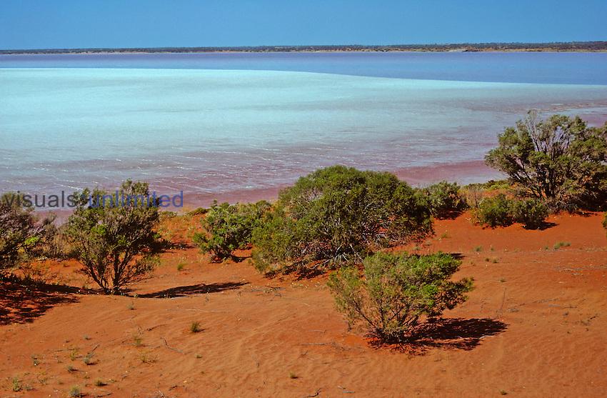 Lake Hart is a playa or dry salt lake in the desert near Woomera, South Australia.