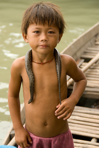 Young child and his snake along the floating village near Siem Reap, Cambodia. The Vietnamese floating villagers on branches of Lake Tonie Sap, Cambodia are a unique nomadic community. With permission from the Cambodian government, they have built an entire floating community of houseboats, churches, clinics, shops and community centers on the river near Siem Reap, Cambodia. As the seasons change and the tides shift the entire village changes its location. The villagers rely on sales of fruits and soft drinks to the many tourists who have come by boat to see firsthand the hardships of life on a floating village. The Vietnamese are the most vulnerable of Cambodia's minorities, and the most prone to discrimination and violations of their rights.