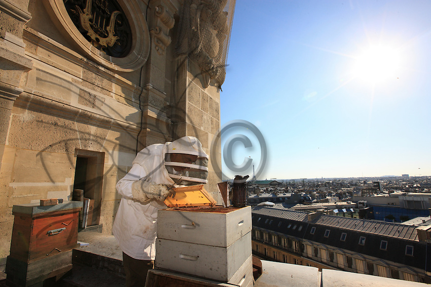 """Paris, Opera Garnier. Jean Paucton, 76 years old, on the roof of the Opera. """"Urban apiculture is a way of making people understand what is happening in the beekeeping world. When bees die out, the environment is really in danger."""""""