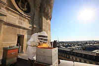 "Paris, Opera Garnier. Jean Paucton, 76 years old, on the roof of the Opera. ""Urban apiculture is a way of making people understand what is happening in the beekeeping world. When bees die out, the environment is really in danger."""