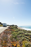 Highway 1 runs past a stretch of coastline between Cambria and San Simeon, California.