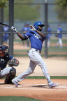 Devan Ahart - Los Angeles Dodgers 2016 spring training (Bill Mitchell)