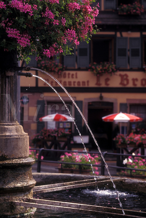 France, Alsace, Barr, Bas-Rhin, Europe, wine region, Close-up of a fountain decorated with pink geraniums in the picturesque village of Barr in the wine region of Alsace.