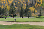 Men putting on golf course, Colorado