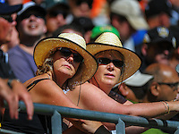 Fans in the grandstand during the ICC Cricket World Cup one day pool match between the New Zealand Black Caps and England at Wellington Regional Stadium, Wellington, New Zealand on Friday, 20 February 2015. Photo: Dave Lintott / lintottphoto.co.nz
