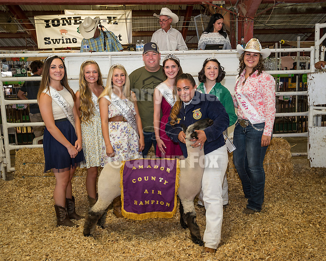 Day 4 of the Amador County Fair, Plymouth, Calif.<br /> <br /> 51st Junior Livestock Auction