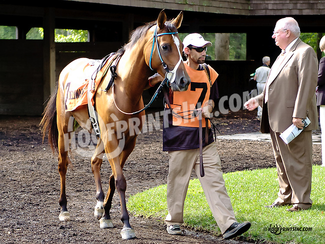 Treasured Moments before The Cre Run Oaks (gr 2) at Delaware Park on 9/1/14