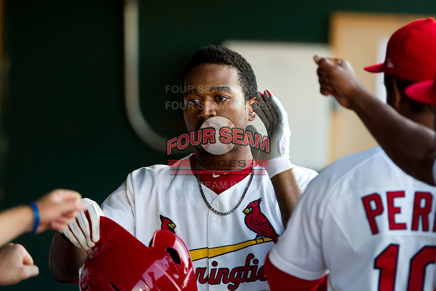 Daryl Jones (4) of the Springfield Cardinals is congratulated by teammates in the dugout after hitting a home run during a game against the Tulsa Drillers at Hammons Field on July 18, 2011 in Springfield, Missouri. Tulsa defeated Springfield 13-8. (David Welker / Four Seam Images).