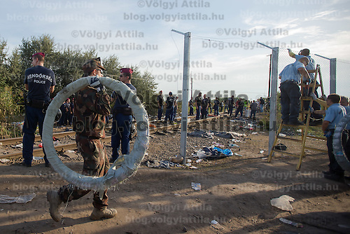 Soldiers and prison guards finish the last few meters of the fence on the border between Serbia and Hungary near Roszke (about 174 km South of capital city Budapest), Hungary on September 14, 2015. ATTILA VOLGYI