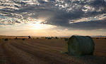 Idaho, North Central, Grangeville. Rolled Hay bales in a field at sunset in summer.