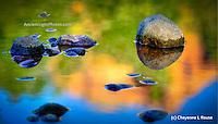 Reflection Rock Pond - Sedona - Arizona