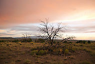Along County Road 57 (also called Waldo Canyon Road) near Cerrillos, New Mexico