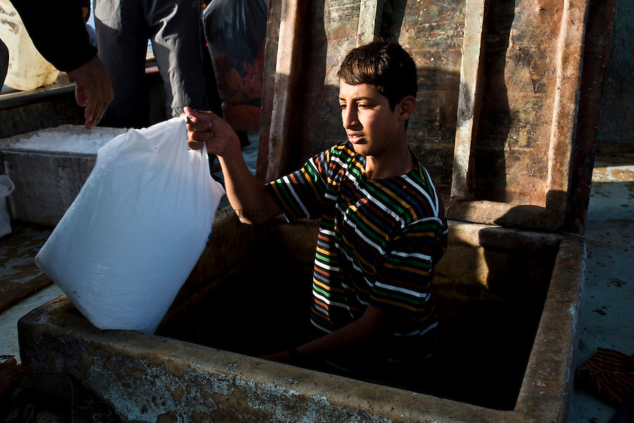 Gaza sea: A young fisherman is putting the ice  that will conserve the fishes inside the boat.<br /> <br /> Mer de Gaza:un jeune p&ecirc;cheur met la glace qui concervera les poissons &agrave; l'int&eacute;rieur du bateau