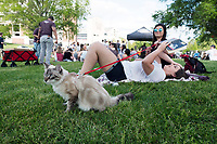 Old Main Music Festival - day party.  Students enjoy listening to local bands play during the afternoon - and bring their cat to enjoy the outing too.<br />  (photo by Megan Bean / &copy; Mississippi State University)