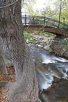 Bridge over creek in Lithia Park,Ashland, Oregon