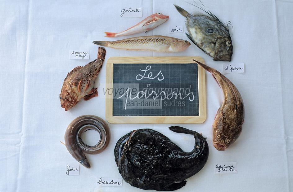 Europe/France/Provence-ALpes-Côte d'Azur/13/Bouches-du-Rhône/Marseille: Les éléments de la bouillabaisse de Gaby le pêcheur au bar des Goudes - Les poissons