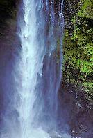 Akaka Falls, the longest waterfall in Hawaii, located on the Hamakua Coast north of Hilo