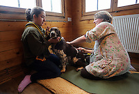 FAO JANET TOMLINSON, DAILY MAIL PICTURE DESK<br /> Pictured: A dog receives acupuncture treatment by vet Joanna Evans (R) Wednesday 23 November 2016<br /> Re: The Dog House in the village of Talog, Carmarthenshire, Wales, UK