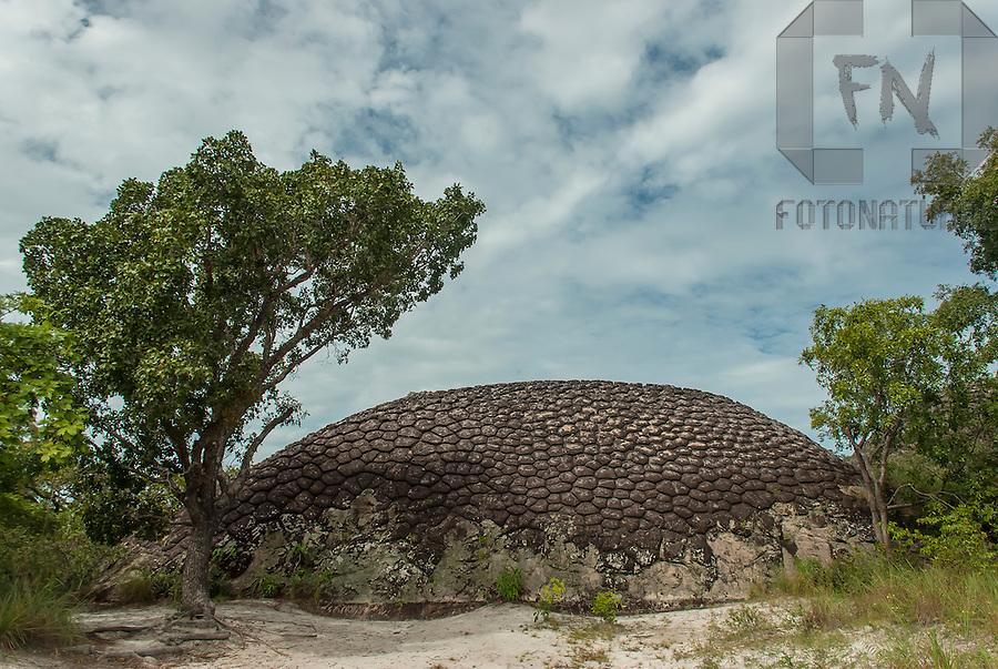 Vegeta&ccedil;&atilde;o de cerrado e a Pedra da Tartaruga da Sexta Cidade no Parque Nacional de Sete Cidades | Brazilian savanna vegetation and Turtle Stone of the Sixth City in the Seven Cities National Park<br /> <br /> LOCAL: Parque Nacional de Sete Cidades, Piau&iacute;, Brasil<br /> DATE: 06/2008<br /> &copy;Pal&ecirc; Zuppani