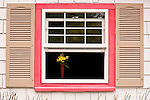 Open window with yellow and green flowers in vase with window shutters and pink window trim