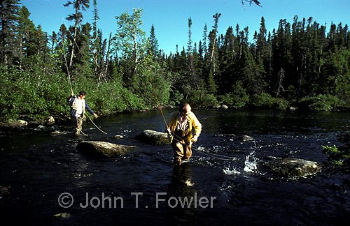 Fly fishing for speckled trout on Minipi River, Labrador<br />