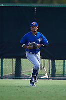 Toronto Blue Jays Norberto Obeso (60) during practice before an instructional league game against the Atlanta Braves on September 30, 2015 at the ESPN Wide World of Sports Complex in Orlando, Florida.  (Mike Janes/Four Seam Images)