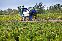 Vine tractor at work during vendange harvest in vineyard at St Emilion, Bordeaux wine region of France