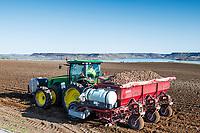 Planting Potatoes in Idaho's Treasure Valley