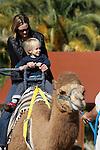 camel ride at the Living Desert