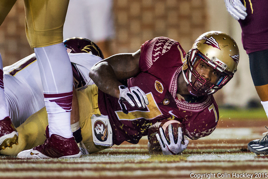 TALLAHASSEE, FLA. 9/5/15-Florida State University's Mario Pender lands in the endzone for the Seminole's second touchdown against Texas State University during first half action at Doak Campbell Stadium in Tallahassee.<br /> <br /> COLIN HACKLEY PHOTO
