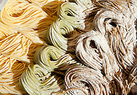Fresh organic pasta sold at Roma Farmer's Market, fresh produce sold directly to the public from local producers.  Every weekend at the old abattoir in Testaccio, Rome, italy