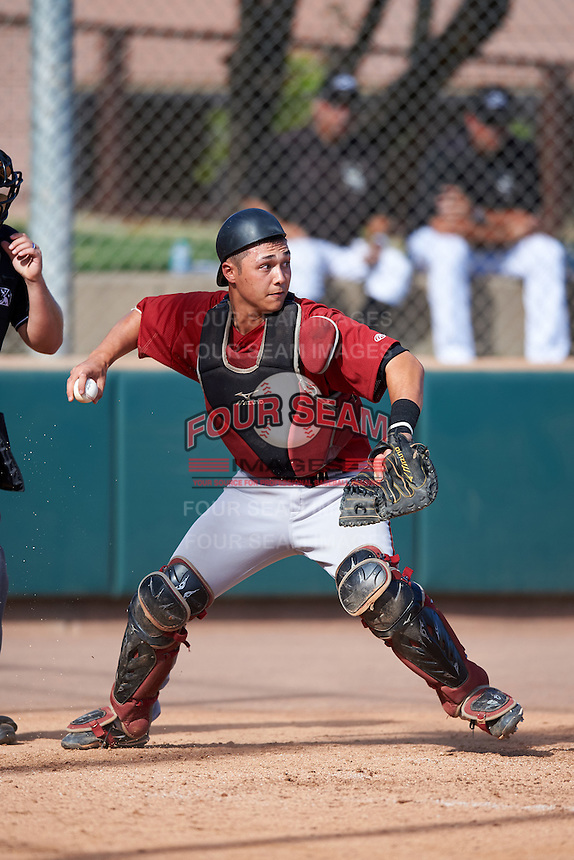 Arizona Diamondbacks catcher Andy Yerzy (27) during an Instructional League game against the Colorado Rockies on October 7, 2016 at Salt River Fields at Talking Stick in Scottsdale, Arizona.  (Mike Janes/Four Seam Images)