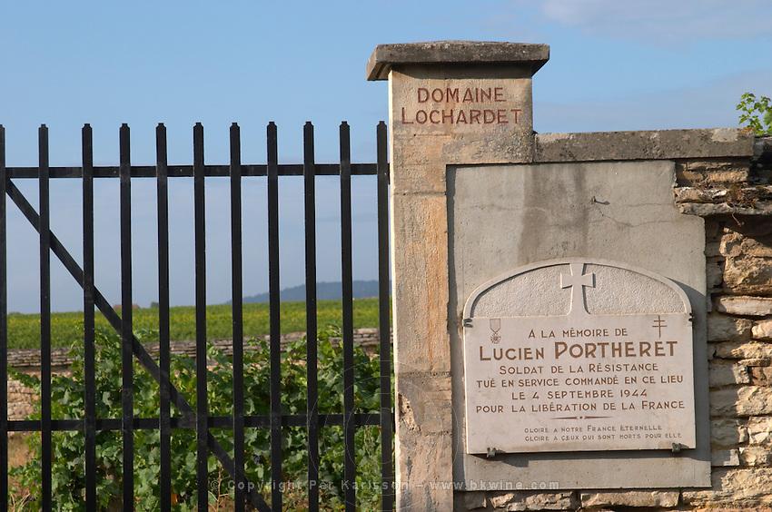 vineyard clos des poutures domaine lochardet pommard cote de beaune burgundy france