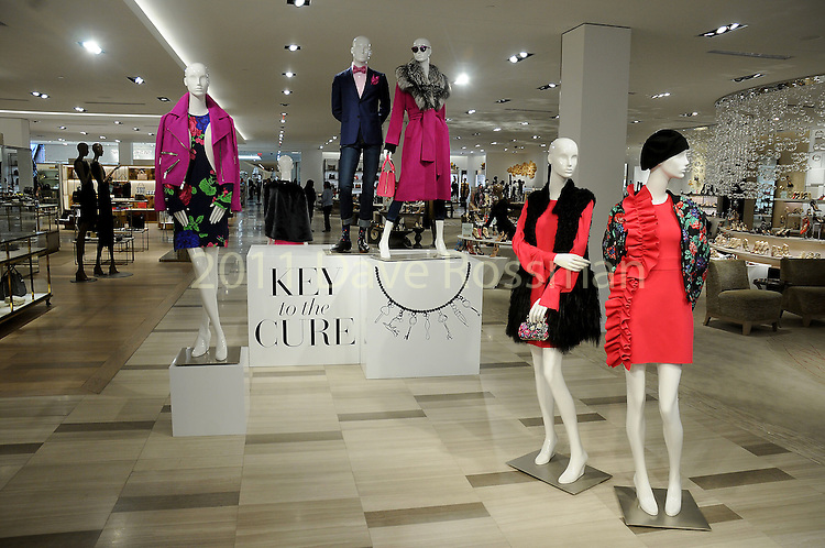Atmosphere at the Saks Fifth Avenue Key to the Cure Wednesday Oct. 26,2016.(Dave Rossman photo)