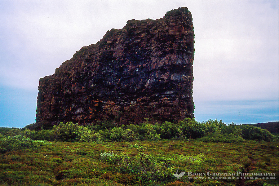 "Iceland. Ásbyrgi canyon is divided through the middle by rock 25 meters high called Eyjan (""the Island"")."