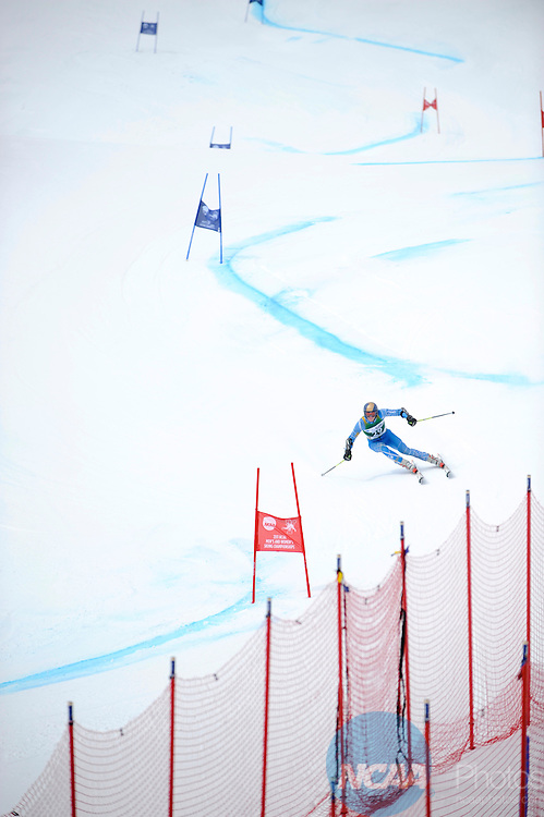 9 MAR 2011: Skiers compete in the men's giant slalom alpine race during the 2011 NCAA Men and Women's Division I Skiing Championship held Stowe Mountain Resort and Trapp Family Lodge in Stowe, VT. ©Brett Wilhelm/NCAA Photos