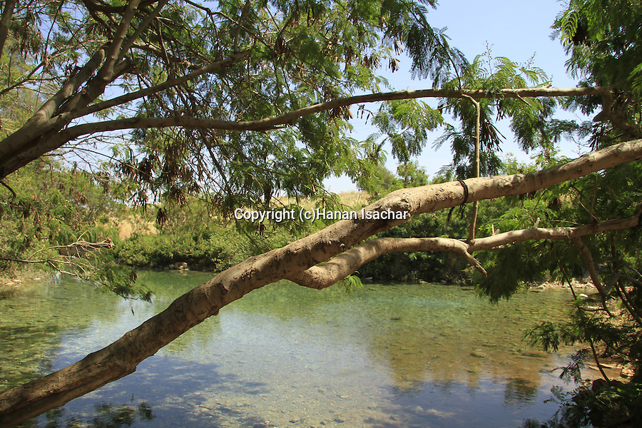 Israel, Ein Shokek, a spring in Beth Shean valley