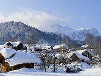 Austria, Styria, Styrian Salzkammergut, Altausseerland, Altaussee at Altausseer Lake: winter scenery, Totes Gebirge mountains
