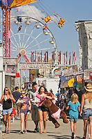 Collier County Fair, Naples, Florida
