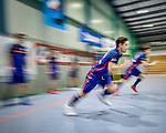 Mannheimer HC v Muenchner SC - Herren - Halle 2017/18